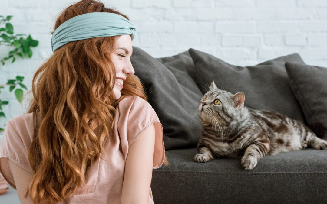 6 Cleaning Tips for Pet Owners